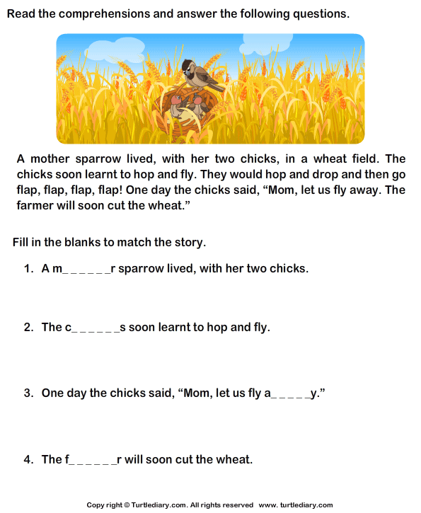 Reading Comprehension Stories Worksheet 33 - Turtle Diary