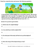 Reading comprehension stories  29 - comprehension - First Grade