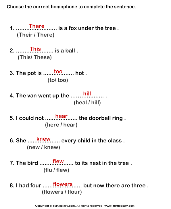 Complete The Sentences With Correct Homophone 4 Worksheet ...