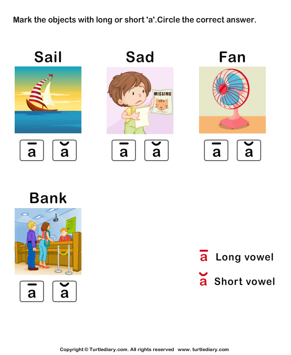 Identify the long or short vowel in words - TurtleDiary.com