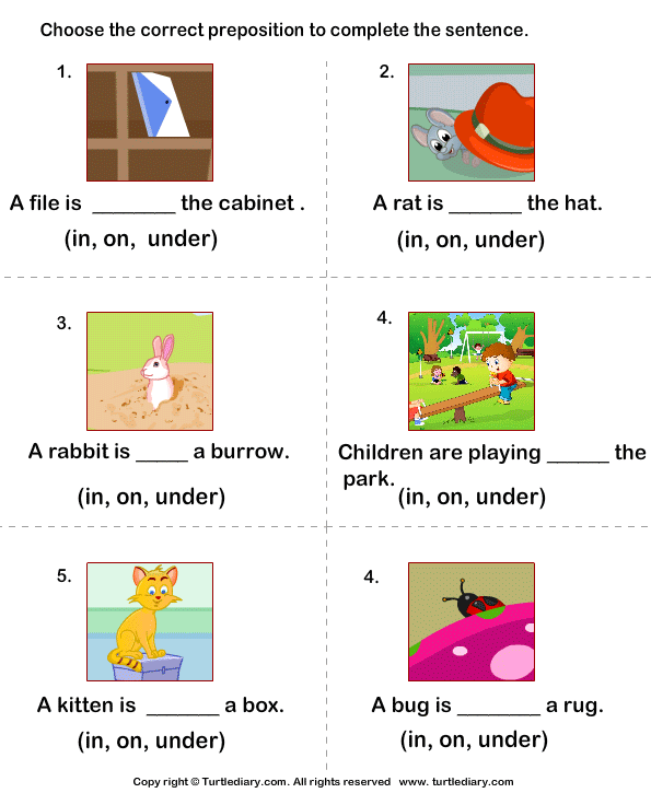 Complete the sentences using in on and under worksheet 4 turtle