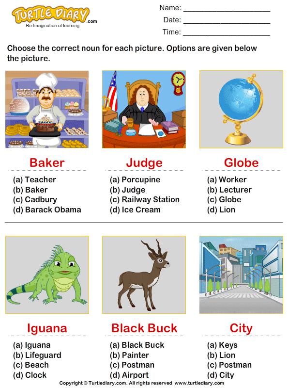 Choose the correct noun Answer