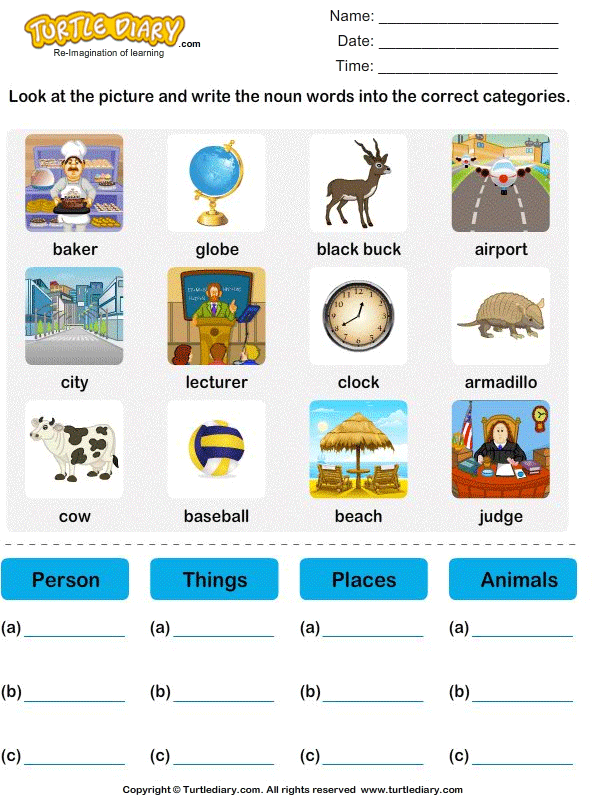 Sort nouns as person, place, animal or thing