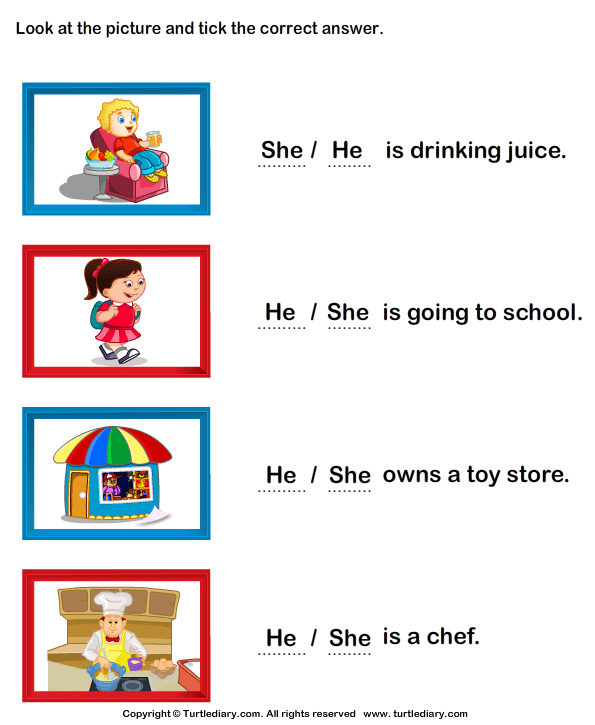 Choose Between She And He 5 Worksheet - TurtleDiary.com