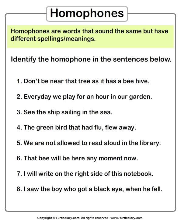 Free Worksheets prime numbers worksheet grade 6 : Identify homophones - TurtleDiary.com