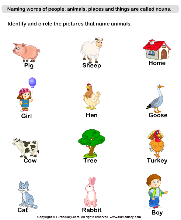 Go Back > Gallery For > Nouns Worksheets For Grade 1