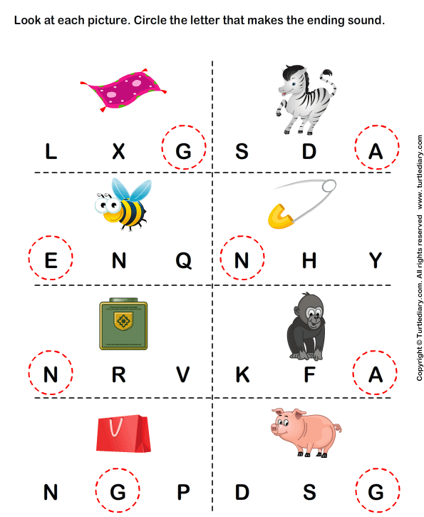 Identify the beginning sound of words - TurtleDiary.com