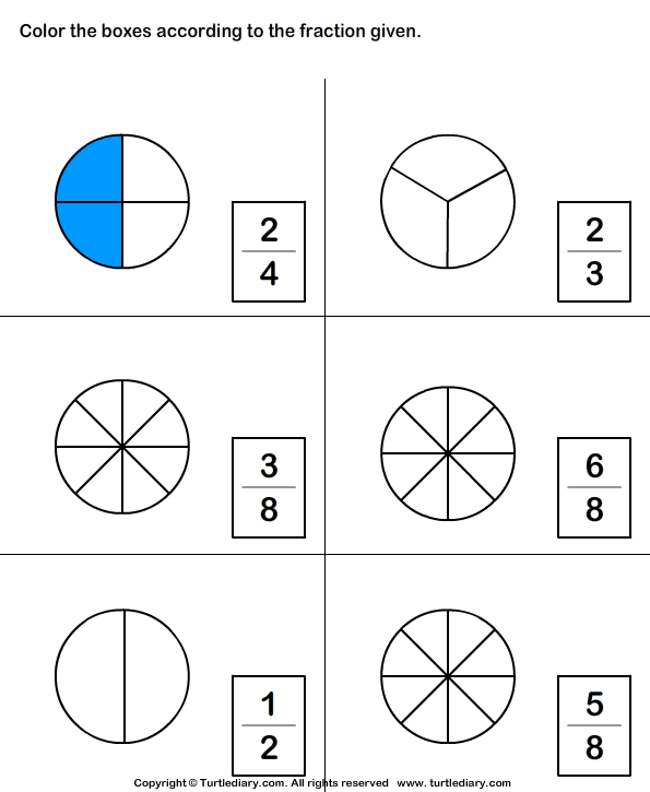 Which Shape Matches The Fraction Worksheet 5 - Turtle Diary