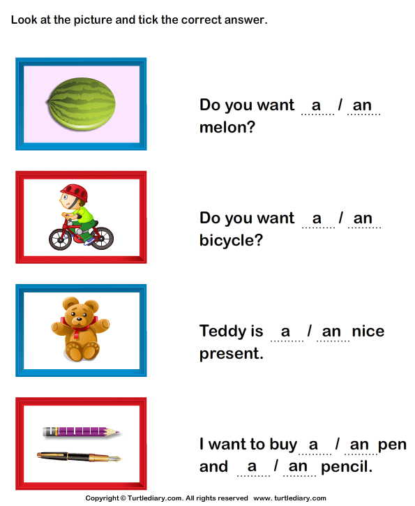 A and An Worksheet Turtle Diary – A and an Worksheets