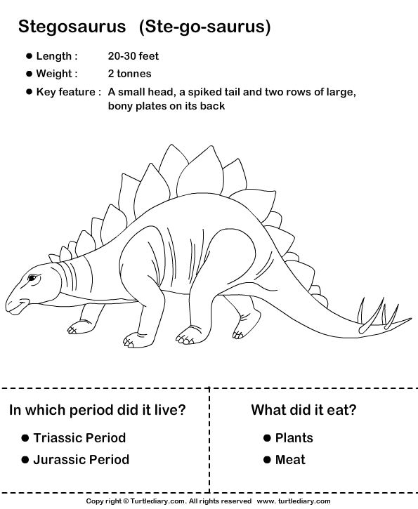 Amazing Dinosaur Facts Worksheet Turtle Diary – Amazing Worksheets