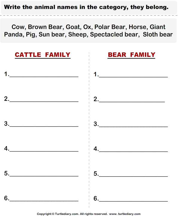 Cattle - Categorize the Animals
