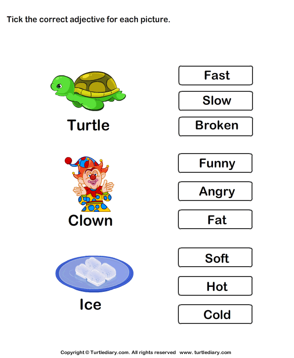 Choose the Best Adjective
