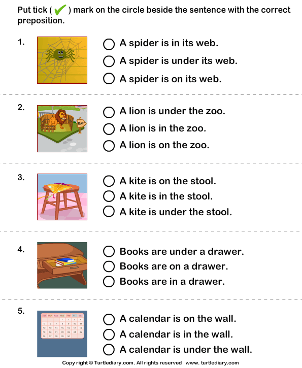 Choose the Sentence with the Correct Preposition in On and Under – Correcting Sentences Worksheets