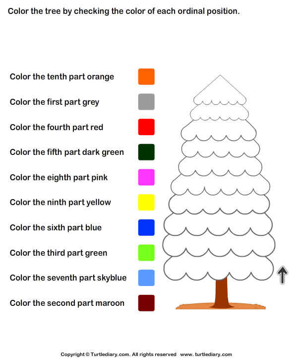 Color Ordinal Position