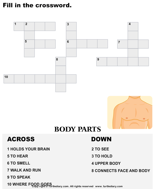 Complete the crossword body parts worksheet turtle diary complete the crossword ccuart Choice Image
