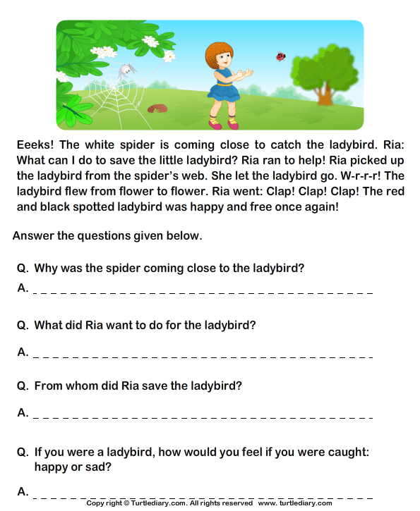 Fill In The Blanks From Comprehension Ria And Ladybird
