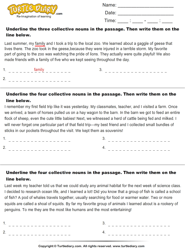 Identify Collective Nouns in the Passage Worksheet Turtle Diary – Collective Nouns Worksheet