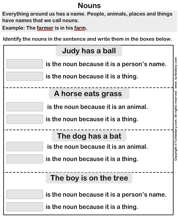 Identify Nouns In The Sentence Worksheet Turtle Diary