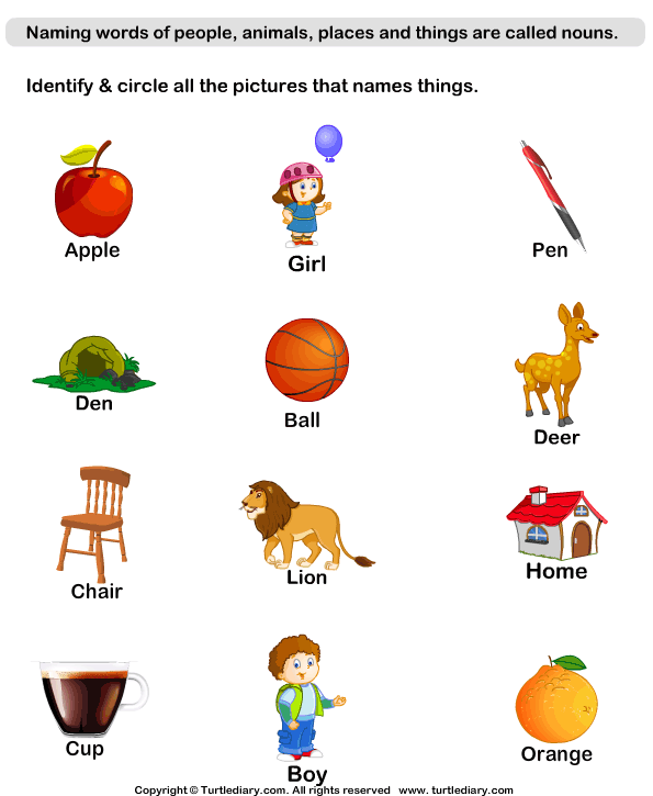 Identify Thing Nouns Worksheet - Turtle Diary