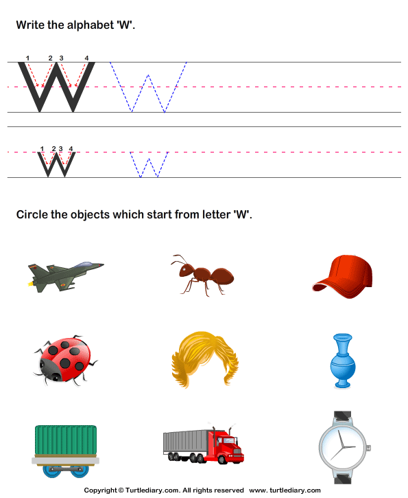 4 letter words that start with w identify words that start with w worksheet turtle diary 20144 | identify words that start with w