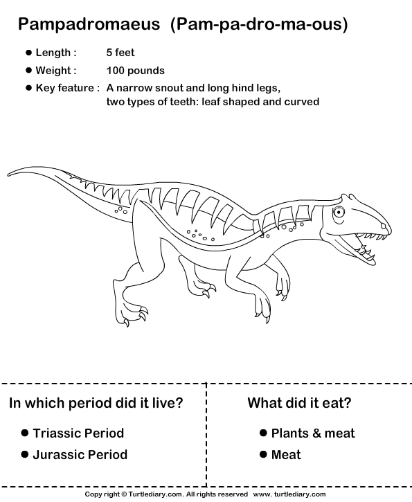 Interesting Dinosaur Facts Worksheet - Turtle Diary