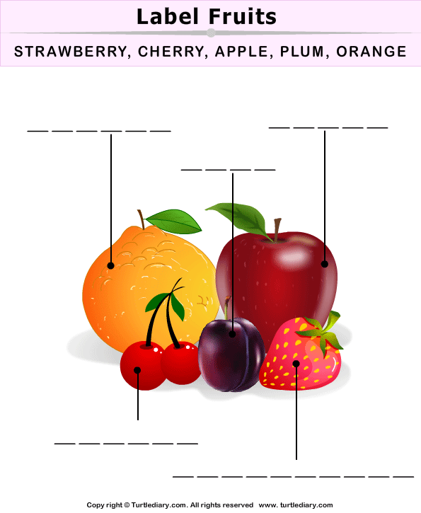 Label the Fruits and Vegetables