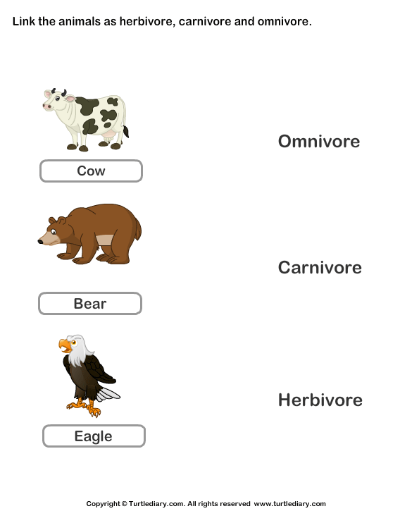 List of Herbivores Carnivores and Omnivores Animals Worksheet – Herbivore Carnivore Omnivore Worksheet