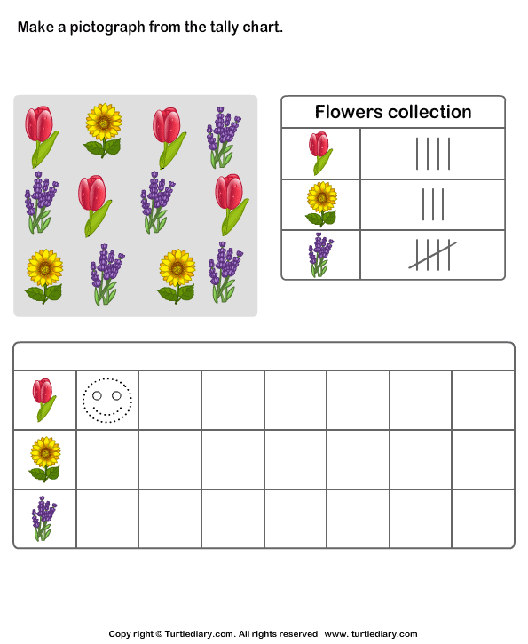 Make Pictograph of Flowers Collection Worksheet - Turtle Diary