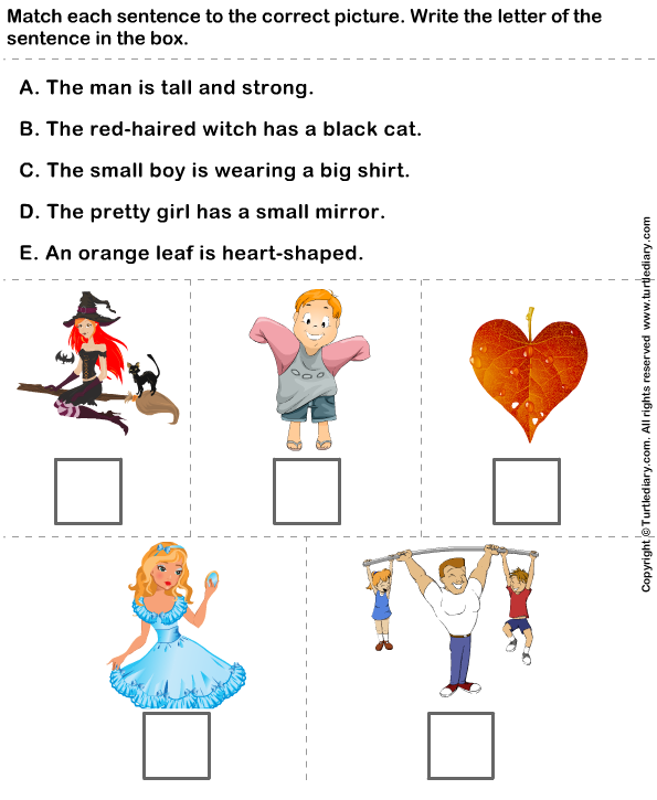 worksheet match sentences with correct adjectives describe pictures