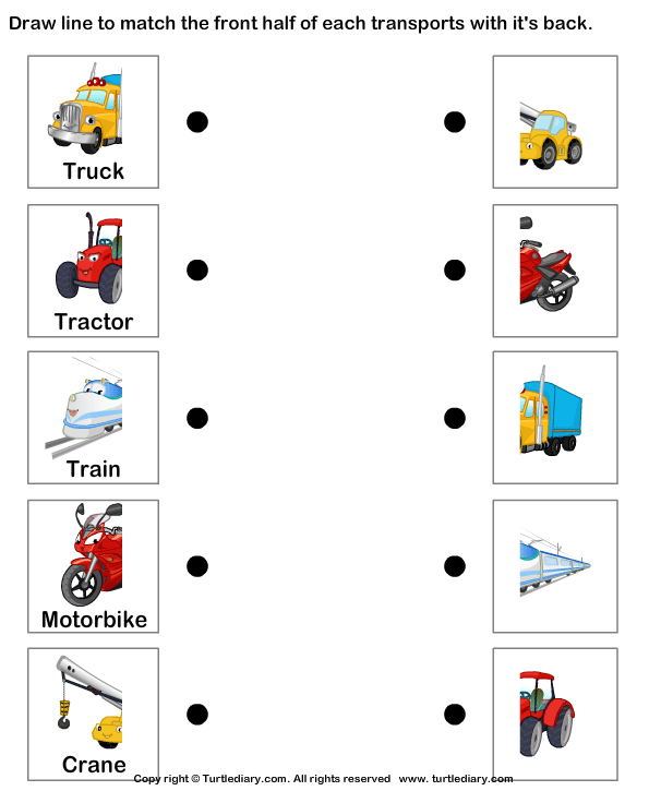 Means of Land Transport Worksheet