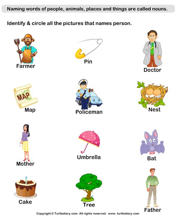 Naming Person Nouns Worksheet - Turtle Diary
