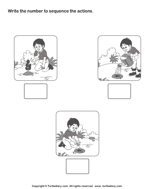 Kindergarten Sequence Worksheets Davezan – Kindergarten Plant Worksheets
