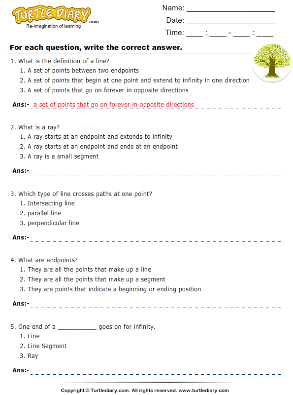 Questions On Lines Line Segments Rays Worksheet Turtle Diary