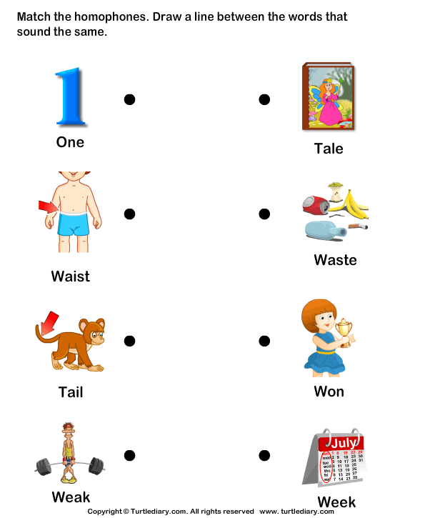 Match The Homophones Worksheet Turtle Diary