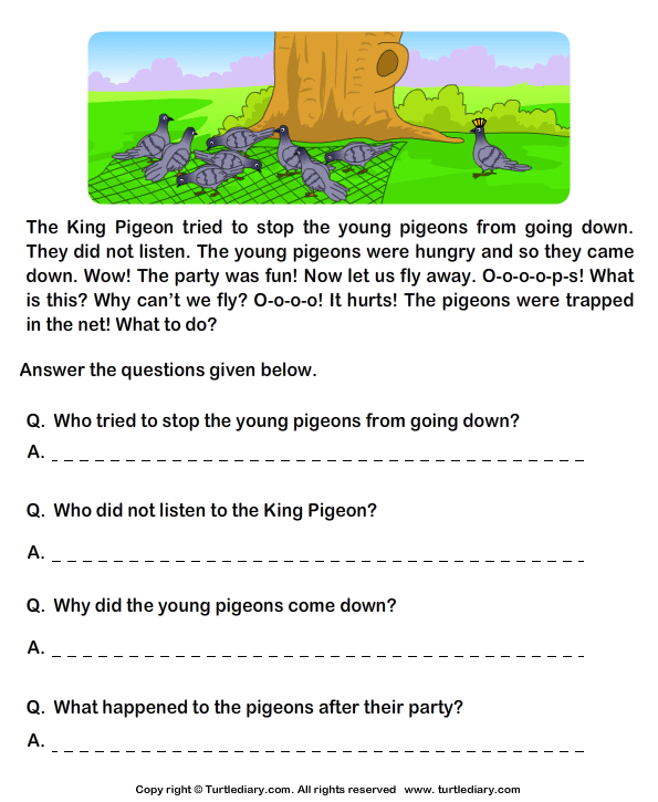Worksheet Reading Comprehension For Grade 1 With Questions read comprehension hunter and pigeons answer the questions reading stories