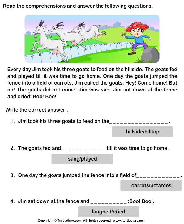 Reading Comprehension Jim And His Goats Worksheet Turtle