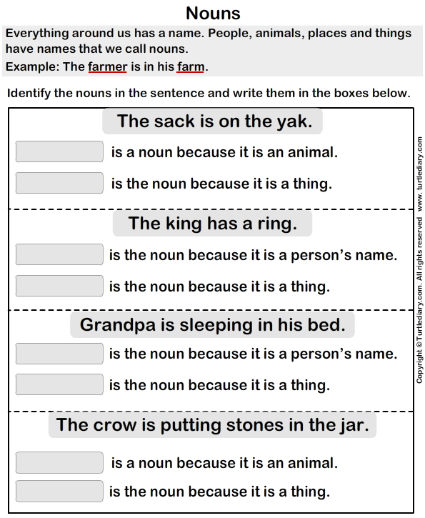Select the Nouns in each Sentence Worksheet - Turtle Diary