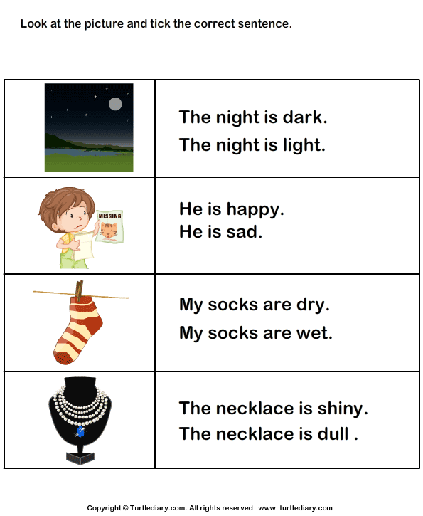 Choose the Sentence with Correct Adjective