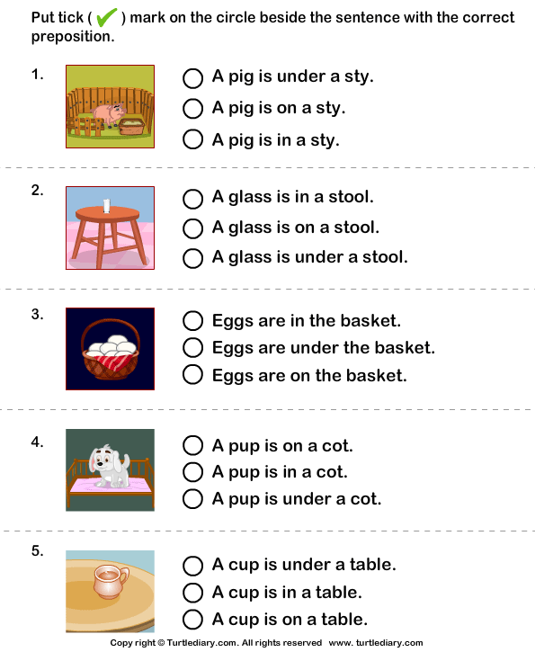 Sentence with the Correct Preposition for Picture Worksheet - Turtle ...