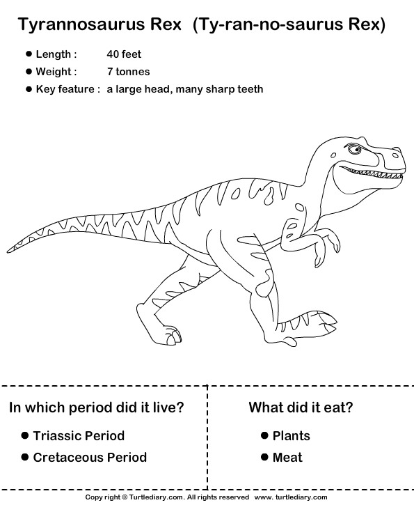 Simple Dinosaur Facts For Kids Worksheet Turtle Diary