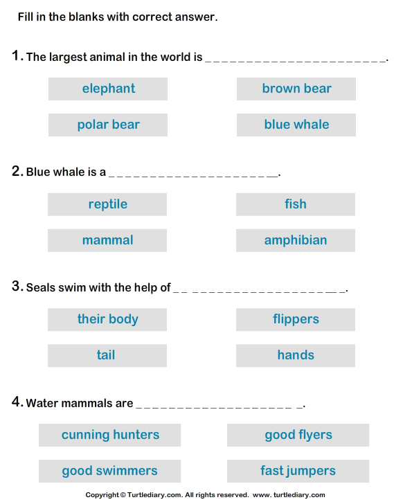 Water Mammals: Write the Correct Answer