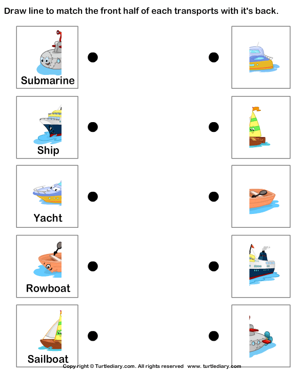 Water Transportation Worksheet - Turtle Diary