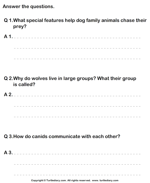 Dog Family - Answer the Questions