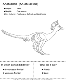 Dinosaurs - determine the period and food habits 2