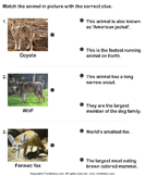Match the animals with their features - animals - Second Grade