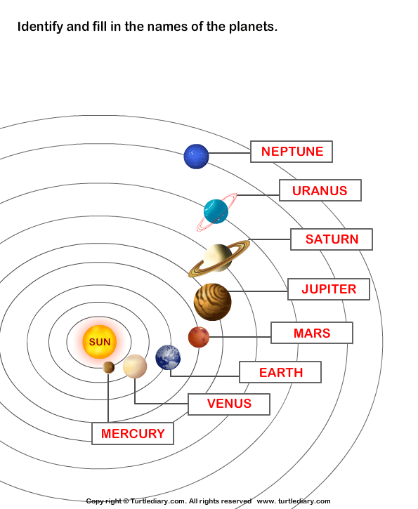 Label the eight planets Answer