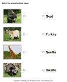 Match animals to their names 4