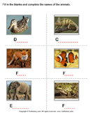 Write the names of the animals 2