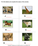 Write the names of the animals 3