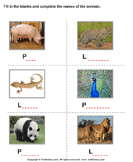 Write the names of the animals 4